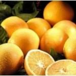 Body Smart – Grapefruit White         10ml