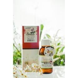 Body Smart – Geranium Massage Oil    125 ml